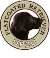 UP2U Logo